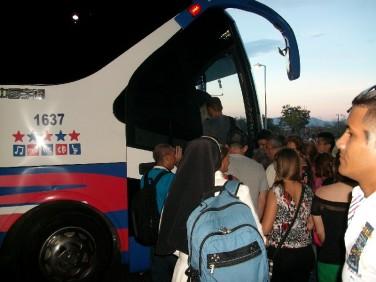 Bus 01