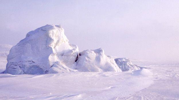 hielos polares